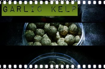 Garlic Kelp Coated 4kg 14mm